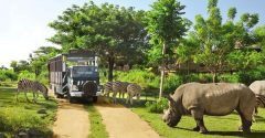 bali safari marine park ticket