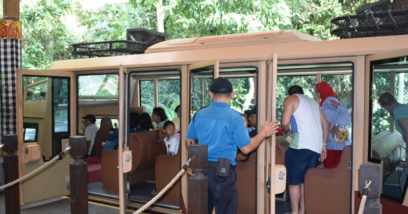 Tram bus at Bali safari and marine park