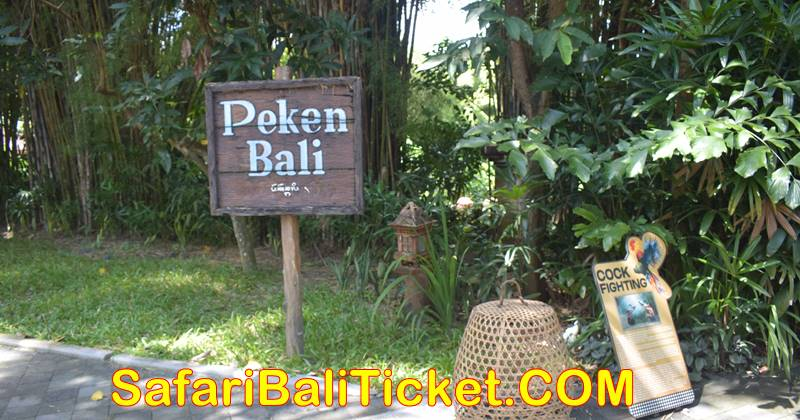 Bali Safari Marine Park Facilities 3