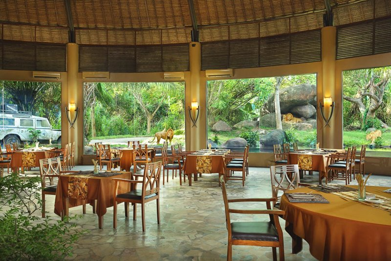 Bali Safari Marine Park tickets with Tsavo lion restaurant view