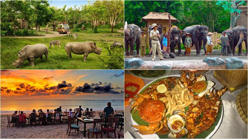 bali safari marine park packages