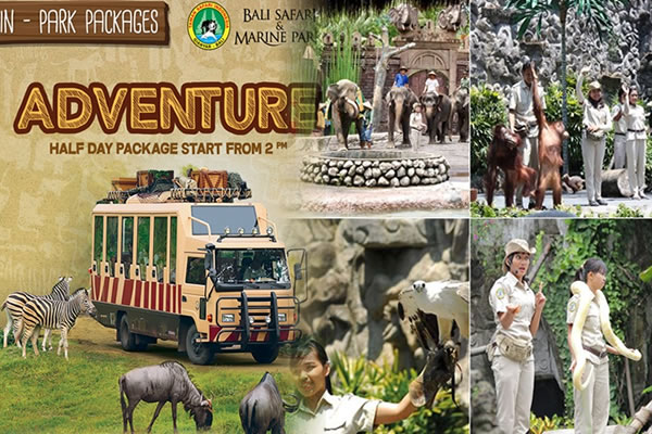 Special Discount Ticket for Bali Safari and Marine Park  Price 2019-2020 3