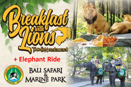 Special Discount Ticket for Bali Safari and Marine Park  Price 2019-2020 8
