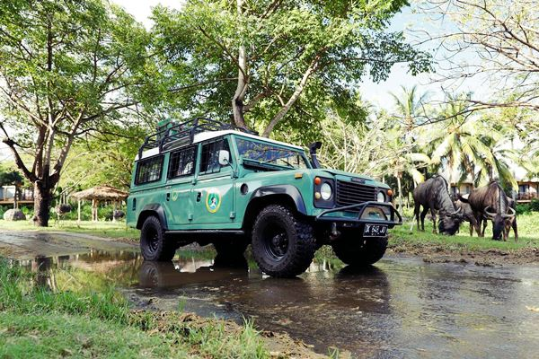 Special Discount Ticket for Bali Safari and Marine Park  Price 2019-2020 12