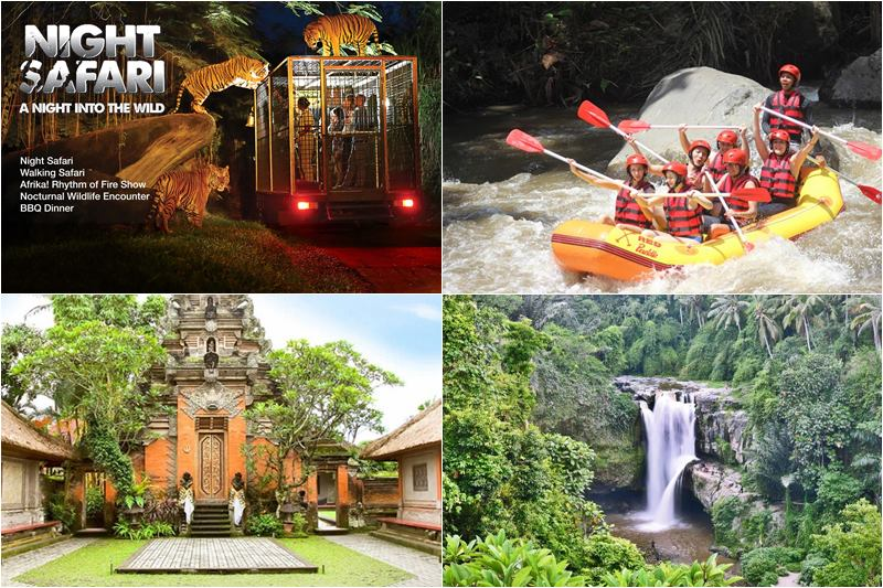 Paket Bali Night Safari + Ayung Rafting + Ubud Tour 3