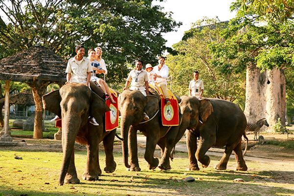 Special Discount Ticket for Bali Safari and Marine Park  Price 2019-2020 6