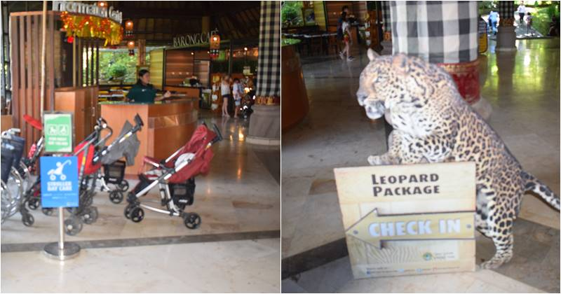 information and check in counter at lobby Barong o f Bali Safari marine park