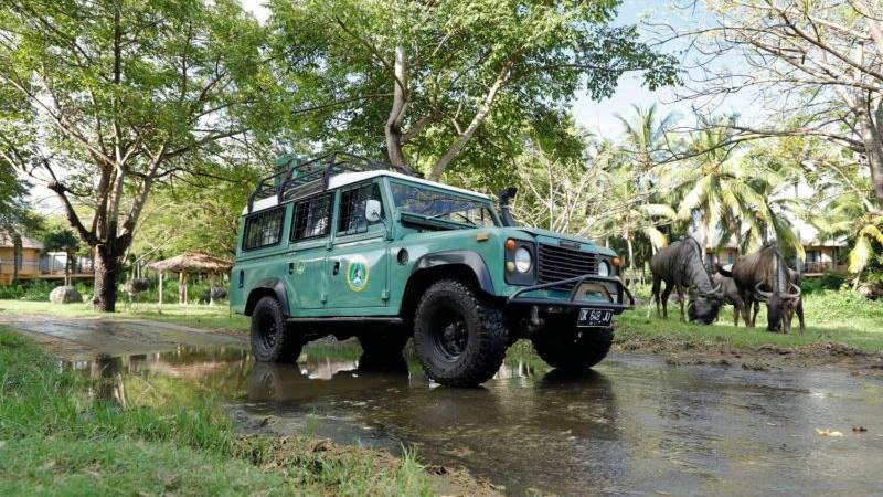 Bali Safari 4x4 private jeep tour