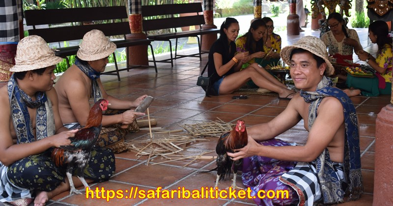 bali safari and marine park package