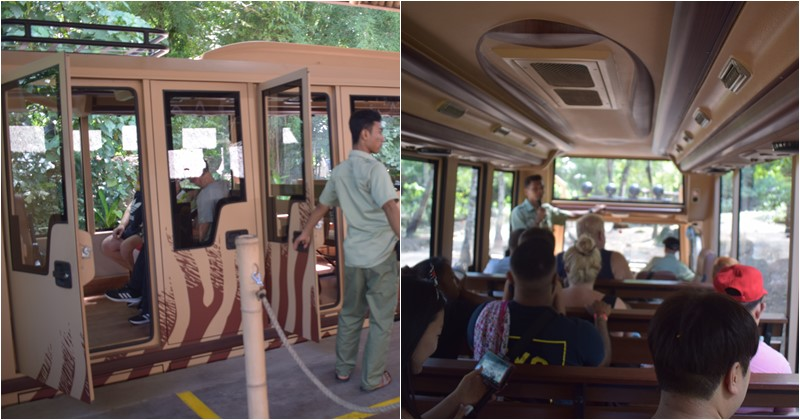 tram bus safari journey for bali safari marine park tickets holder