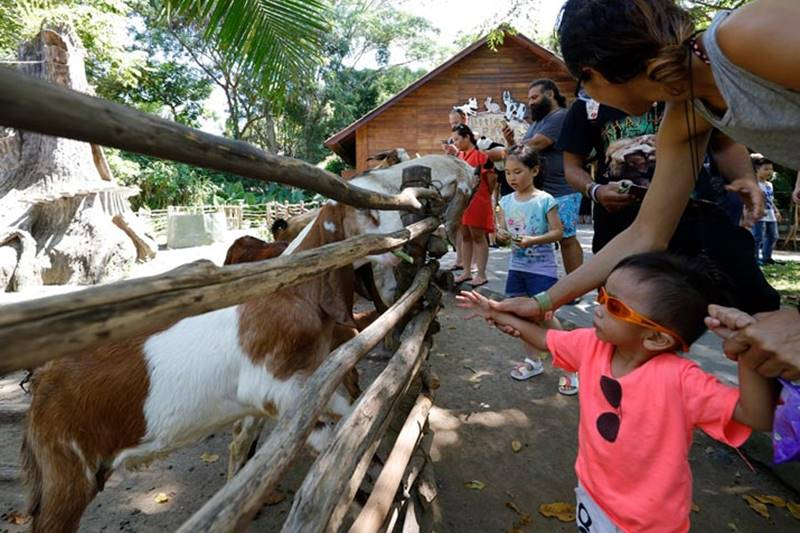 Traveling Facilities and Tips For Bali Safari with A Baby 1