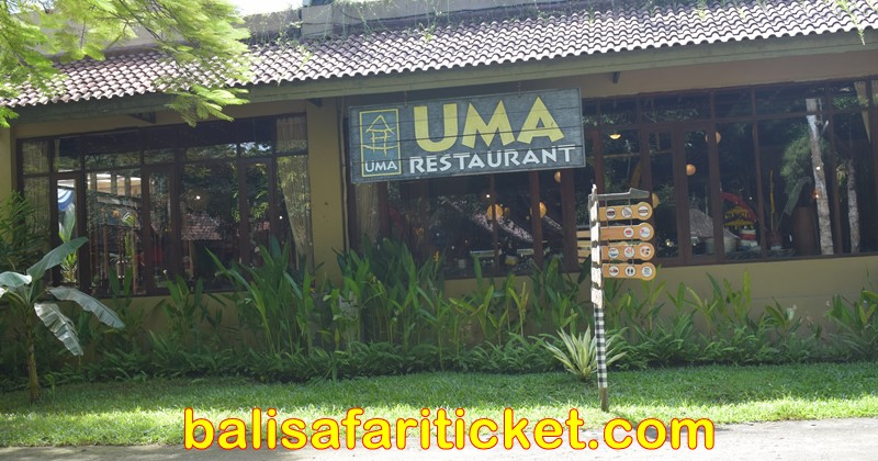 uma restaurant jungle hopper package